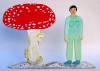 http://www.alexandralakin.com/files/gimgs/th-15_15_red-mushroom.jpg